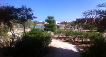 2 Bedroom First Floor Apartment  For Sale at Italian Compound In El Gouna